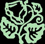 Logomarca Bioplantas