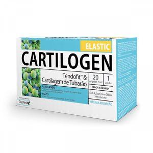 Cartilogen Elastic